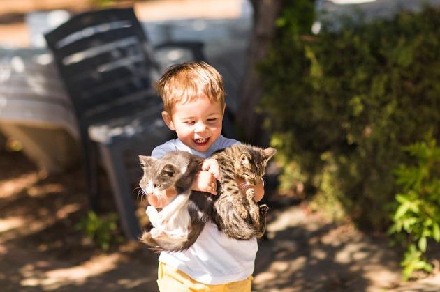 アレルギーの少年と猫