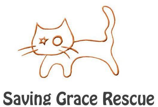 Saving レスキューロゴ