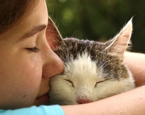 人と顔をつけて目をつぶる猫