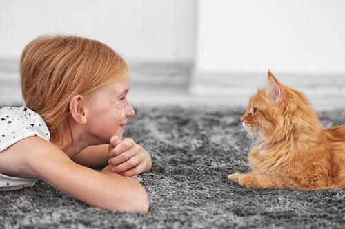 猫と見つめ合っている女の子