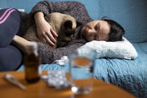 具合が悪い人間と猫