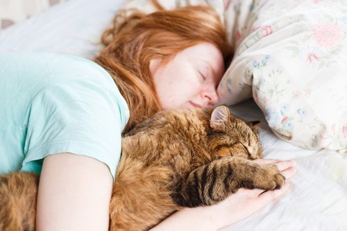 寝ている女性と猫