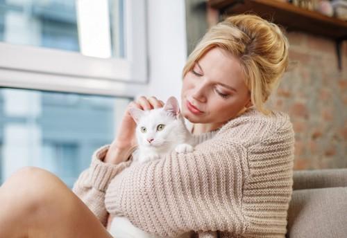 女性に抱かれている白猫