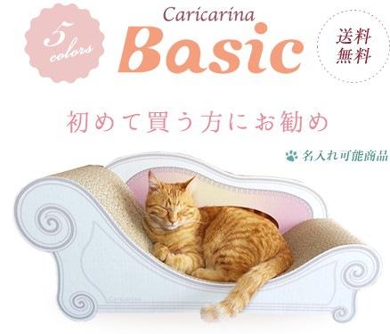 カリカリーナに座る猫