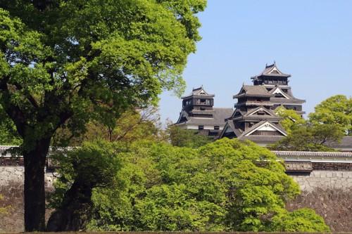木々の向こうに見える熊本城
