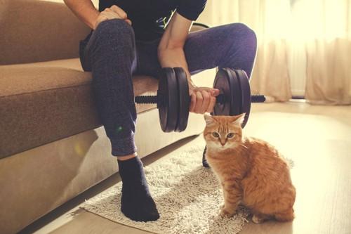ダンベルをする男性と猫