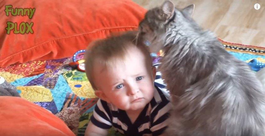 カメラを見据える赤ちゃん