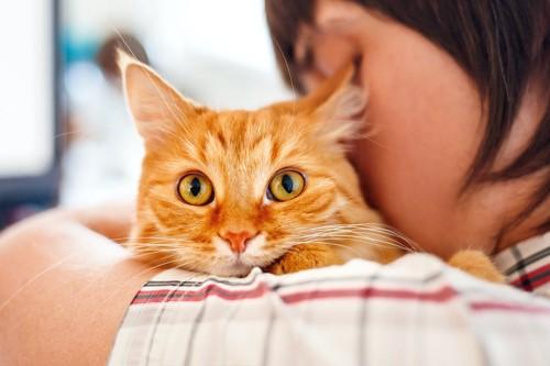 飼い主に抱っこされる茶トラ猫
