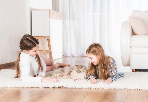 猫と少女二人