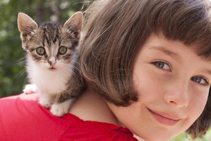 猫とおかっぱの女の子