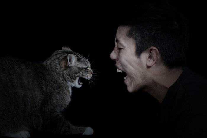猫と向き合う男
