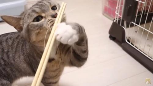 割り箸を引き寄せる
