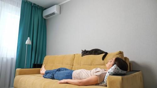 エアコンの下で眠る人と猫