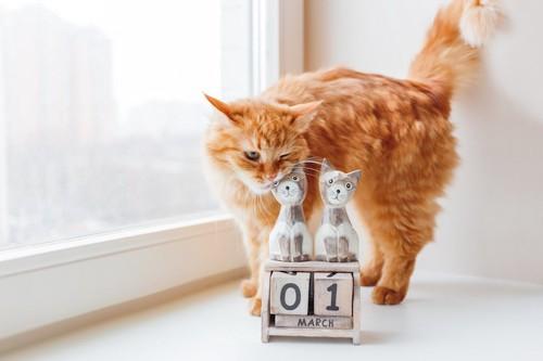 カレンダーにすりすりする猫