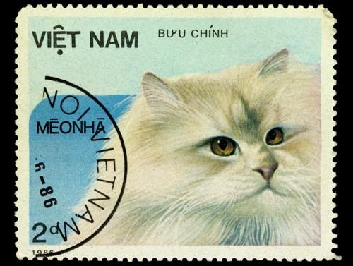 ベトナムの猫の切手