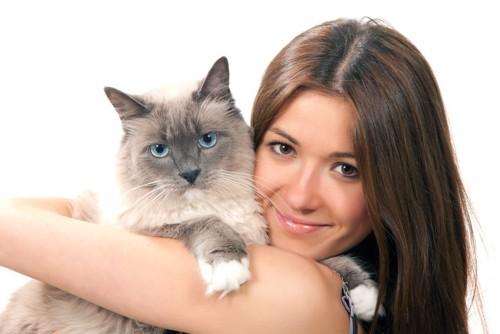 女性に抱かれるもふもふ猫