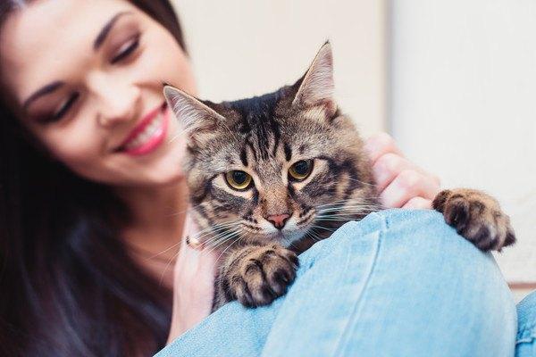 笑顔でキジ猫を撫でる女性