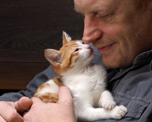 お互いに嬉しそうな猫と男性