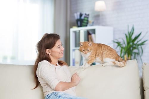 ソファーにいる女性と猫