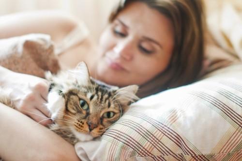 同じ枕で眠る女性と猫