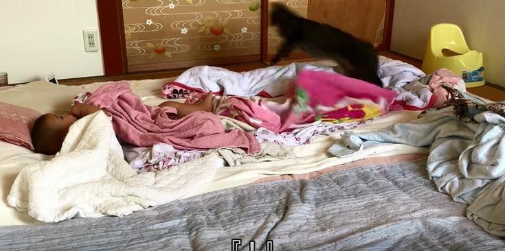 赤ちゃんと布団から飛び出す猫