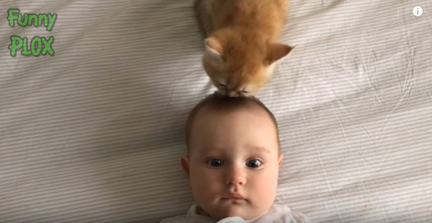 真顔の赤ちゃん