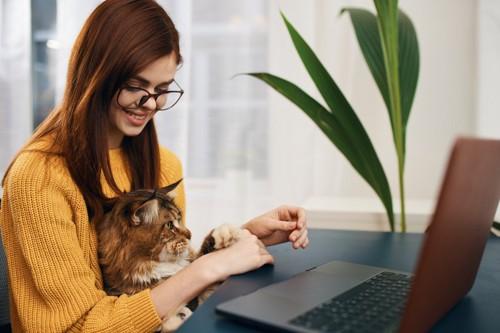 猫を膝の上に乗せている女性