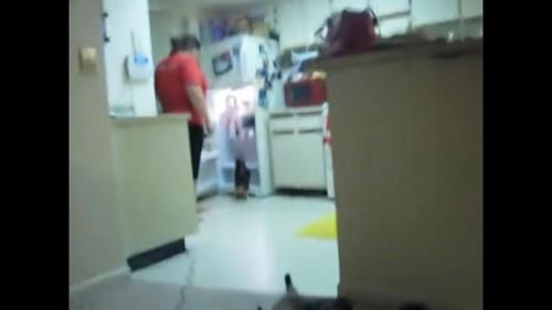 冷蔵庫に行く猫