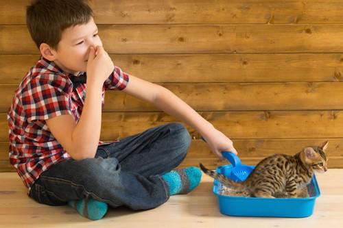 子猫のトイレの臭いで鼻をつまむ男の子