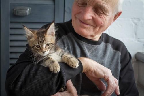 シニアと猫