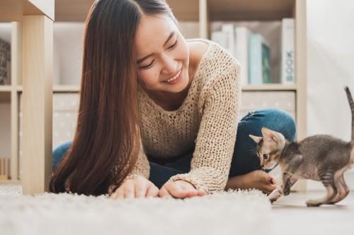仔猫と遊ぶ人