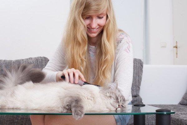 猫の抜け毛をケアする女性