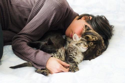 添い寝される子猫