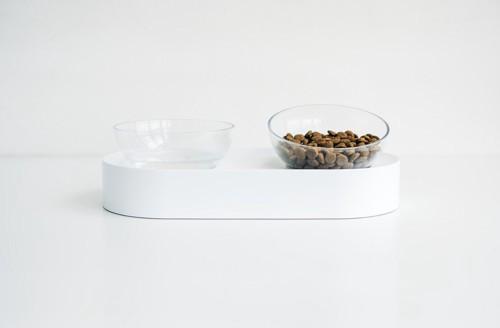 高さのある食器で食べる猫