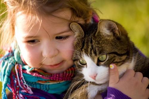 猫を抱っこする小さな女の子