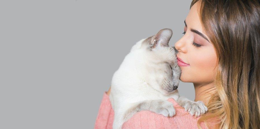 女性に抱かれて目を閉じる猫