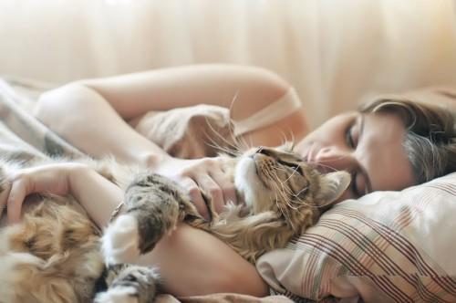 ベッドで猫と一緒に眠る女性