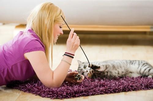 猫じゃらしで一緒に遊ぶ女性と猫