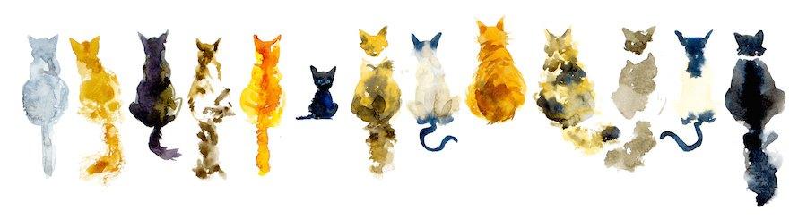 いろんな柄の猫の後ろ姿の絵