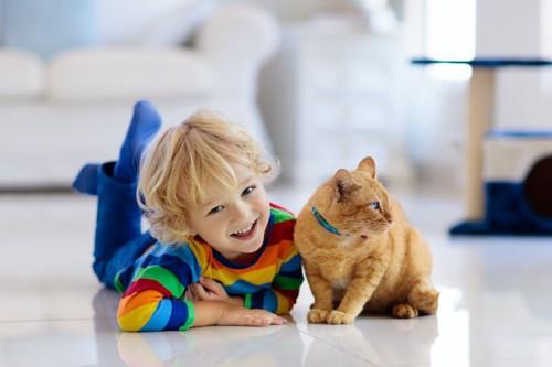 はしゃぐ子供から顔を背ける猫