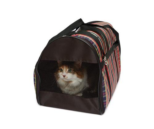 布の鞄に入る猫