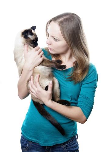 猫を抱き上げて叱る女性