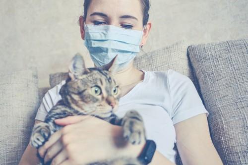 マスクをした女性と猫