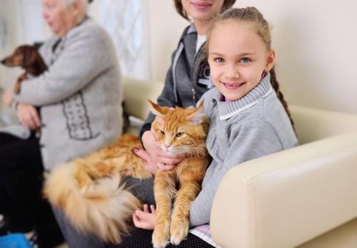 少女に抱かれる猫