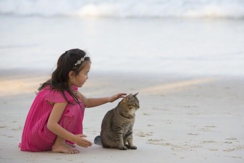 浜辺で猫を撫でる女の子