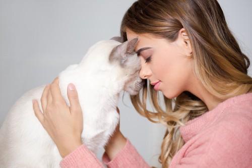 目を閉じて猫と額をくっつけ合う女性