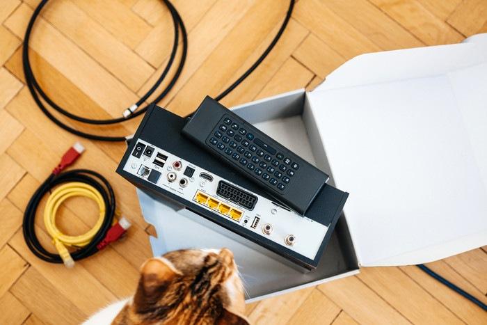 インターネット回線の機器と猫