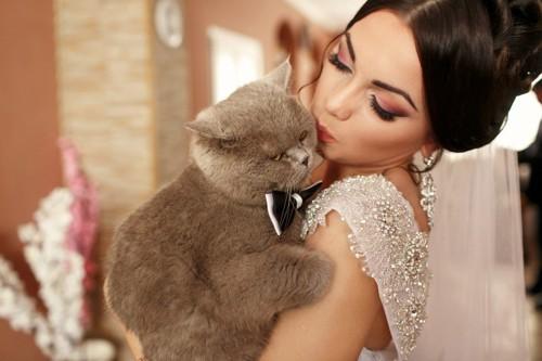 抱かれるのが嫌そうな猫