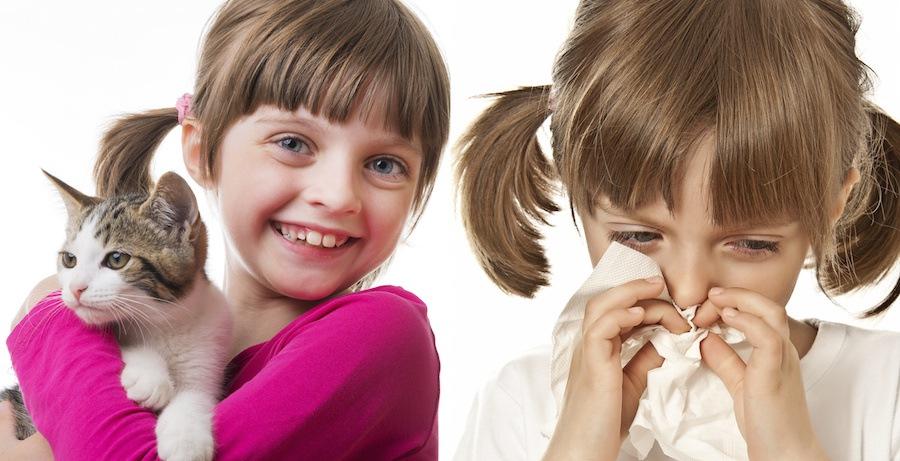 鼻をかむ少女と猫と抱っこする笑顔の少女