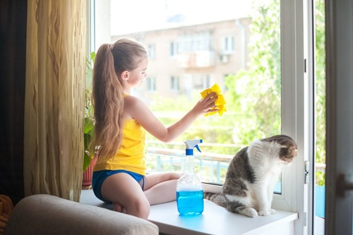 掃除をする女性の傍らの猫